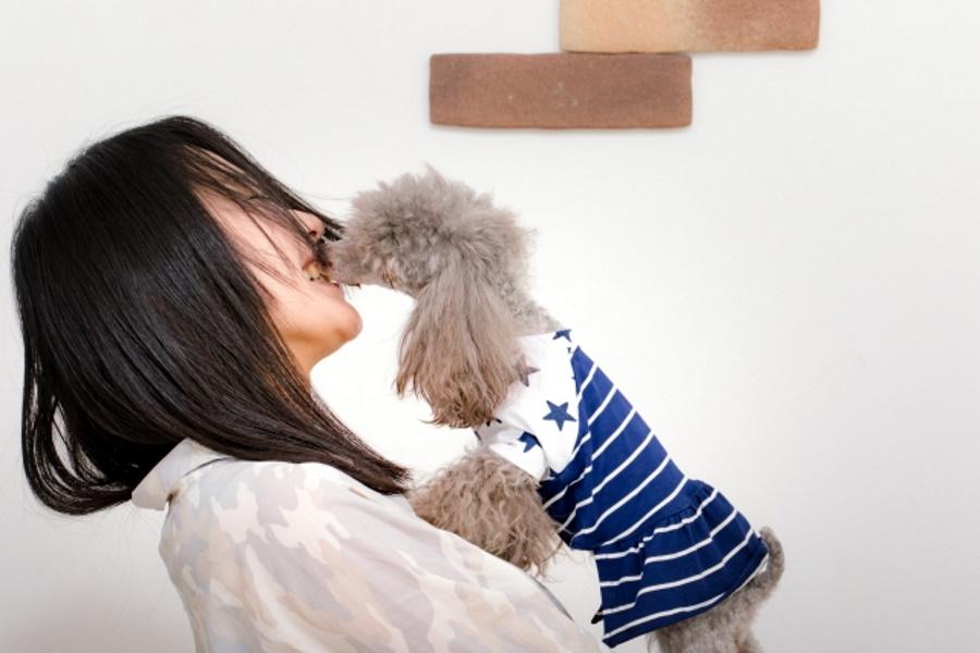 犬の歯周病はうつる?