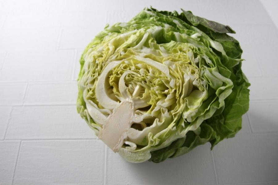 犬のダイエットには野菜が良い?